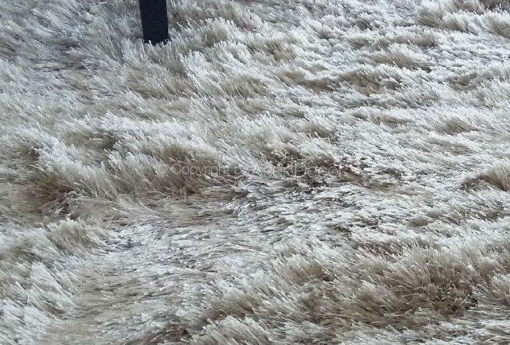 Tapete Nezza Shaggy Fios Mesclados 60mm Fendi Sala Home
