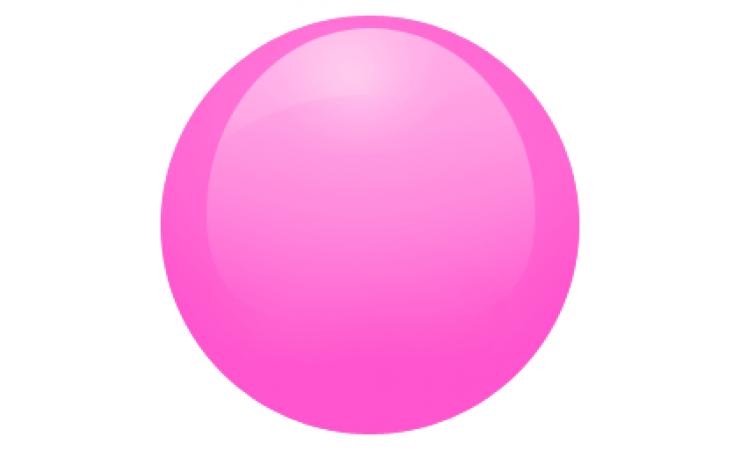 Rosas e Pinks ()